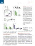 p53-Mediated Hematopoietic Stem and Progenitor Cell Competition - Page 6