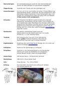 Sven - Erftlauf - Seite 7