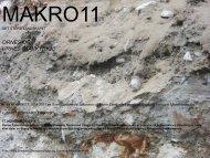 Notat 1-2011, Makro-Meso-Mikro Ornes synfaring, registrering…