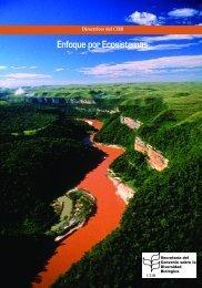 Descripción del enfoque por ecosistemas