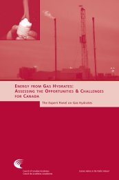 energy from gas hydrates: assessing the opportunities & challenges
