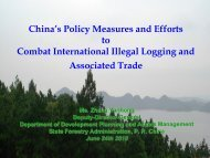 PowerPoint Template - Illegal Logging Portal