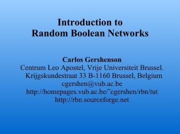 Introduction to Random Boolean Networks