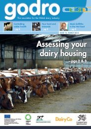 Godro Issue 16 - Dairy Development Centre