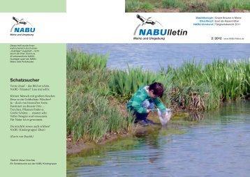 Projektentwickler für erneuerbare Energien - NABU Mainz und ...