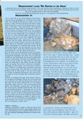 mineraler - edelstener fossiler - smykker - NAGS - Page 3