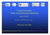 Toward real-time multi-model physical simulation - LIFL