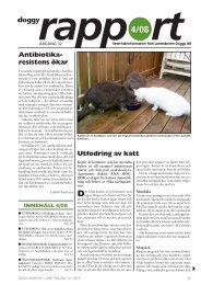 Doggy-Rapport nr 4-08.qxd