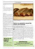 Doggy-Rapport nr 4-08.qxd - Page 3