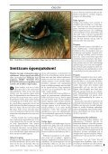 Doggy-Rapport nr 4-08.qxd - Page 7