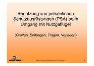 Benutzung von persönlichen Schutzausrüstungen (PSA ... - LLFG