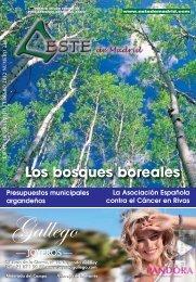 Revista  este de madrid (1991-2011) - Archivo de Arganda del Rey ...