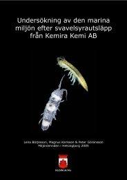 Undersökning av den marina miljön efter svavelsyrautsläpp från ...