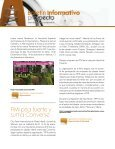 Ver - Prospecta - Page 4