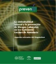 Aspectos relevantes del Diagnóstico - Diputación Provincial de ...