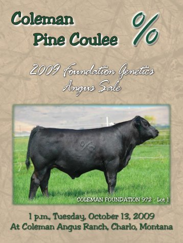 Coleman Pine Coulee - Angus Journal