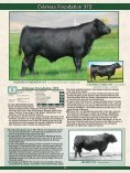 Coleman Pine Coulee - Angus Journal - Page 5