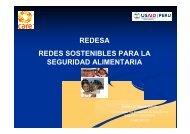 REDESA REDES SOSTENIBLES PARA LA SEGURIDAD ...