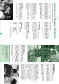 familielejre - Ungdom Med Opgave - Page 4