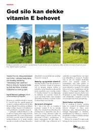 Les hele artikkelen av Ingvild Steinnes Luteberget i Norsk ...