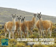 Corporate Engagement Brochure - Wildlife Conservation Society