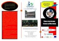 2011 / 2014 - Escola Secundária Dr. João Lopes Morais