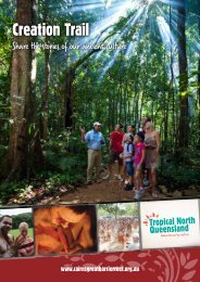Creation Trail - Queensland Holidays