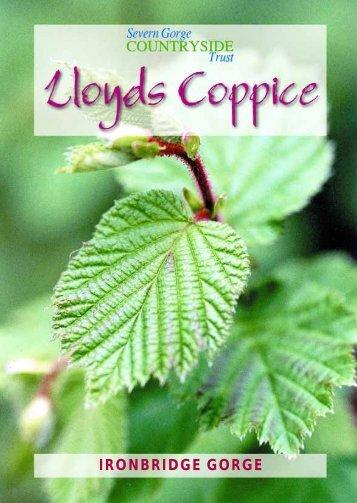 Lloyds Coppice, Ironbridge Gorge - Severn Gorge Countryside Trust