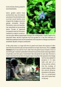 Lloyds Coppice, Ironbridge Gorge - Severn Gorge Countryside Trust - Page 5