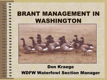 Brant Management in Washington - Pacific Coast Joint Venture