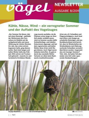 Newsletter 08/11 Beobachtungen und Beobachtungstipps im August