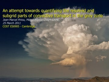 An attempt towards quantifying the resolved and ... - Convection