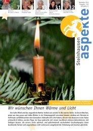 Ausgabe 12/2010 (Grösse 2.9 MB) - Aspekte Steinhausen
