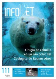 InfoVet N° 111 - Facultad de Ciencias Veterinarias - Universidad de ...