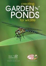 Creating Garden Ponds for Wildlife - Pond Conservation
