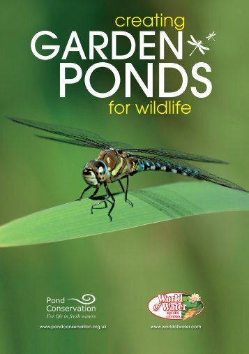 Creating Garden Ponds for Wildlife - Pond Conservation