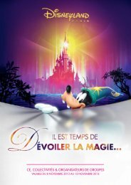 ce, collectivités & organisateurs de groupes - Disneyland® Paris