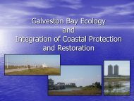 Galveston Bay Ecology and Integration of Coastal Protection and ...