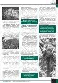 SOCIÁLNA POLITIKA - Ústredie práce, sociálnych vecí a rodiny - Page 7