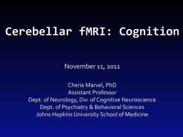 Cerebellar fMRI - Cognition - Neurometrika