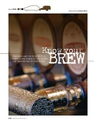 THE LAGER AND THE STOUT OF IT – A CRASH COURSE IN ...