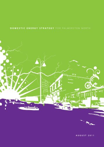 Domestic Energy Strategy - Palmerston North City Council