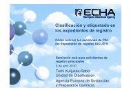 Clasificación y etiquetado en los expedientes de registro - Europa