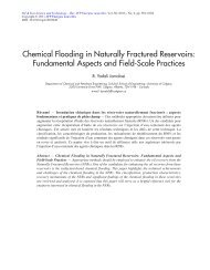 Chemical Flooding in Naturally Fractured Reservoirs - Oil & Gas ...