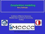 Zooplankton modelling - meece