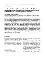 Sarah Fowler and Michael F. Thomashow - Bioinformatics