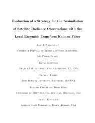 Evaluation of a Strategy for the Assimilation of Satellite Radiance ...