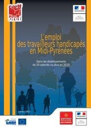 L'emploi des travailleurs handicapés en Midi-Pyrénées 2013