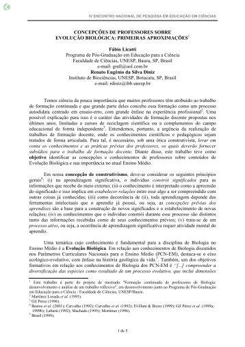CONCEPÇÕES DE PROFESSORES SOBRE ... - Axpfep1.if.usp.br