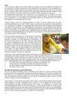 Müllerpier Locatie - Page 4